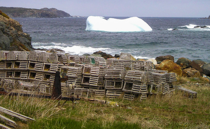 Lobster traps on ice