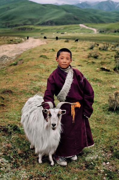 Boy and goat – Litang, Tibet, 2001