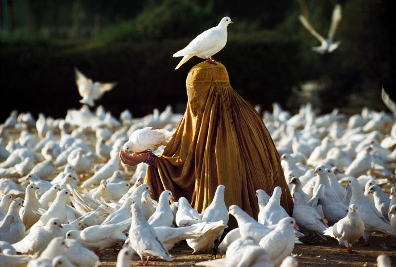 A woman feeding pigeons - Mazar-i-Sharif, Afghanistan, 1991